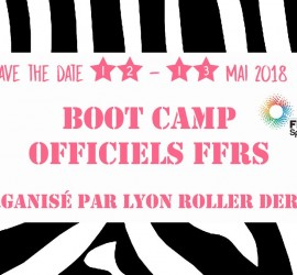 bootcamp Lyon roller derby officiels