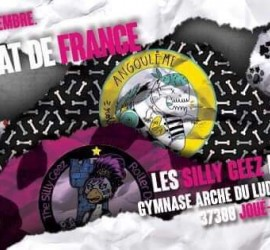 Championnat Roller Derby nationale 2 My Roller Derby Tours